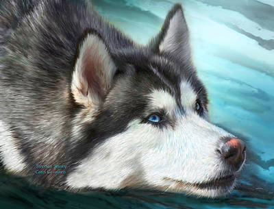 Animal Art Giclee Mixed Media - Siberian Husky by Carol Cavalaris