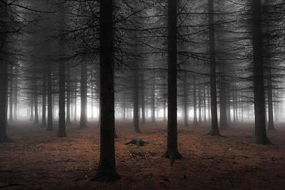 Silence Print by Dragisa Petrovic