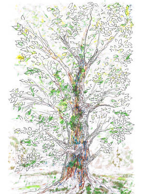 Silent Witness Print by Regina Valluzzi