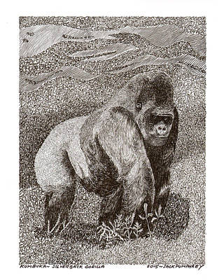 Gorilla Drawing - Silver Back Gorilla In The Mist by Jack Pumphrey