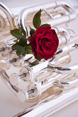 Silver Tuba With Red Rose On White Print by M K  Miller