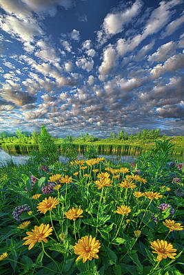 Unity Photograph - Sing For The Day by Phil Koch