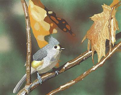 Titmouse Painting - Sitting Pretty by William Demboski