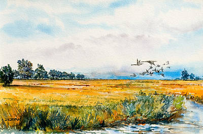 An Island Painting - Skidaway Flyway by Fred Ekman