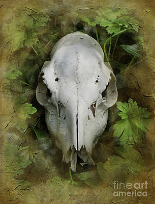 Skull And Leaves Print by The Rambler