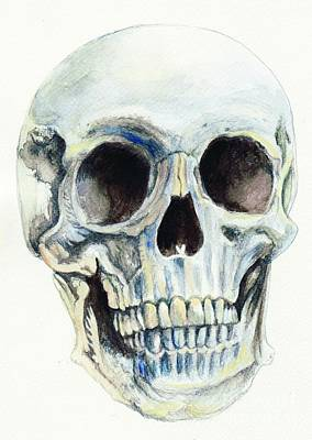 Skull Print by Morgan Fitzsimons