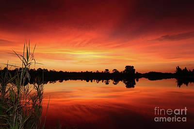 Photograph - Sky On Fire by Rick Mann