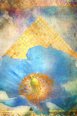 Blue Flowers Photograph - Sky Poppy by Aimee Stewart