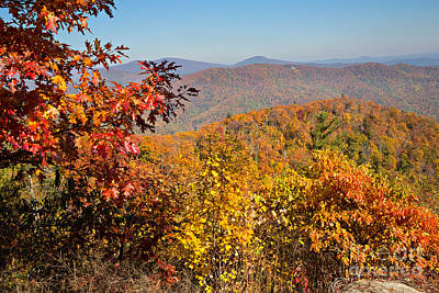 Autumn Photograph - Skyline Drive Overlook Near Hazel Mountain In Shenandoah National Park by Louise Heusinkveld