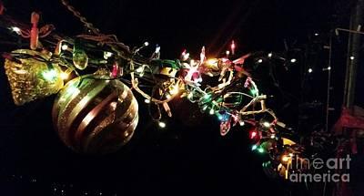 Nuts Photograph - Slap Happy Christmas Ornaments by Maria Pancheri