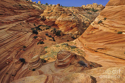 Slickrock, Vermilion Cliffs, Usa Print by Frans Lanting/MINT Images