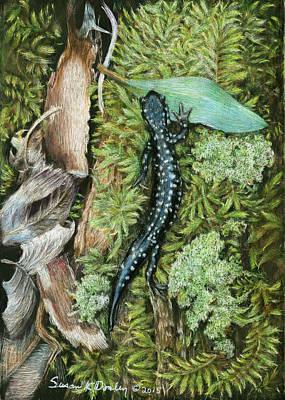 Slimy Salamander Original by Susan Donley