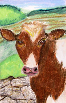 Pasture Scenes Drawing - Slopoke by Barbara Giordano