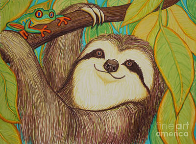 Rainforest Drawing - Sloth And Frog by Nick Gustafson