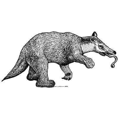 Sloth Drawing - Slothbear by Karl Addison