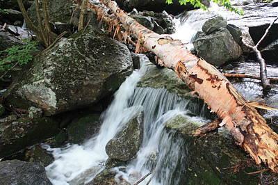 Small Beautiful Waterfalls Print by Tom Johnson