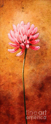 Small Clover Print by John Francis