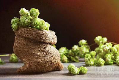 Small Sack Of Hops Print by Amanda Elwell
