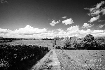 Small Worn Concrete Laneway Leading To Farmland In Rural County Monaghan At Tydavnet Republic Of Ire Print by Joe Fox
