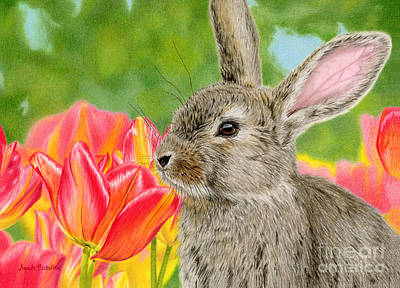 Rabbit Drawing - Smell The Flowers by Sarah Batalka