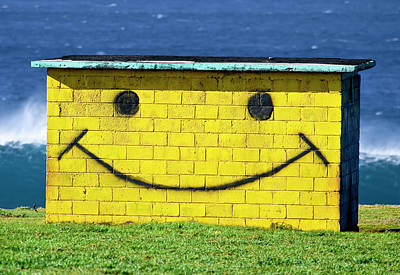 Smiley Shed Print by Sean Davey