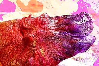 Hippopotamus Digital Art - Smiling Hippo by Ericamaxine Price