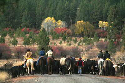Cattle Drive Digital Art - Smith Mountain Cattle Drive by Lori Kimbel