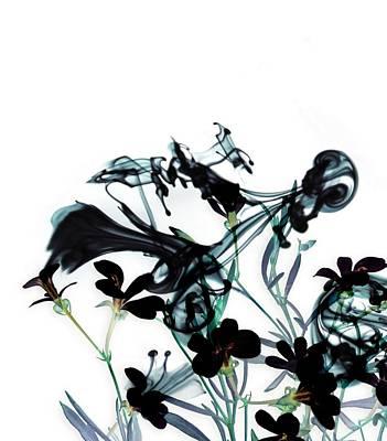Smoke Without Fire I Print by Varpu Kronholm