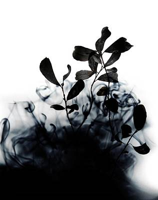Smoke Without Fire II Print by Varpu Kronholm