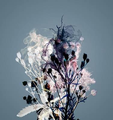 Outline Digital Art - Smoke Without Fire V by Varpu Kronholm