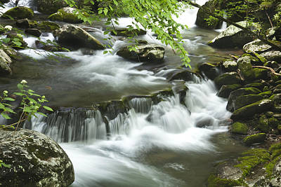 Leaves Photograph - Smoky Mountain Rapids by Andrew Soundarajan