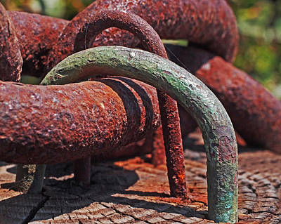Weather Photograph - Snaking Rust  by Rona Black