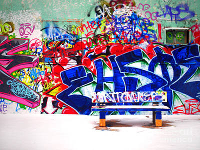 Unique Gift Photograph - Snow And Graffiti by Tara Turner
