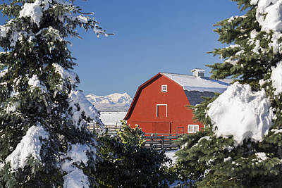 Snow Covered Red Barn Framed Print by Michael Interisano