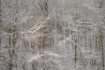 Snow Days Print by Joseph Smith