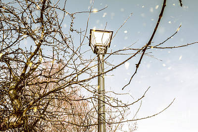 Snow Fall And Old Lights Print by Jorgo Photography - Wall Art Gallery
