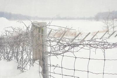 Snow Fence Print by Sandra Cunningham