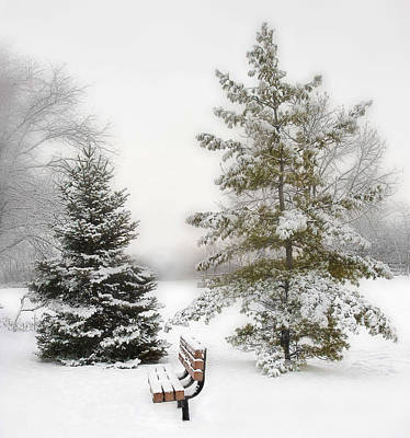 Snow In The Park Print by Liviu Leahu