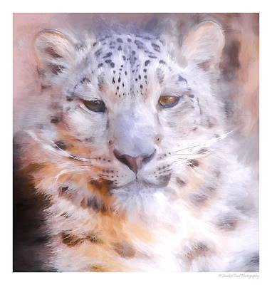 Colorful Photograph - Snow Leopard by Christopher Wieck