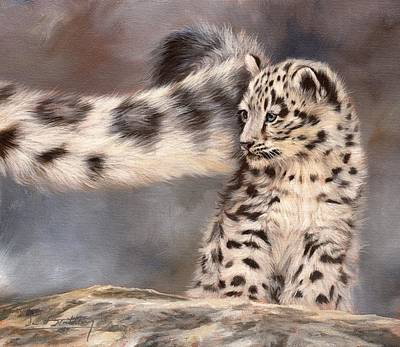 Snow Leopard Tail Print by David Stribbling