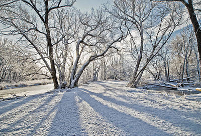 Snow Shadows Original by James Steele