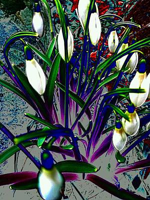Snowdrops In Abstract  Print by Beth Akerman