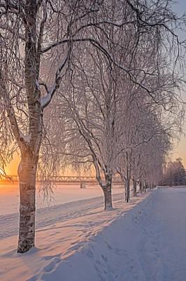 Snowfall Print by Angela Aird