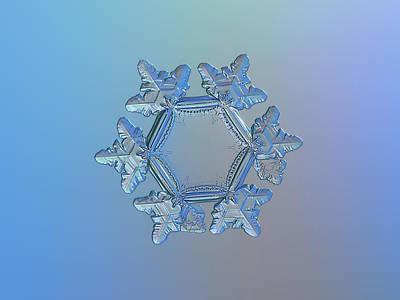 Glitter Photograph - Snowflake Photo - Sunflower by Alexey Kljatov