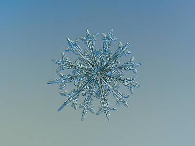 Sparkle Photograph - Snowflake Photo - Twelve Months by Alexey Kljatov