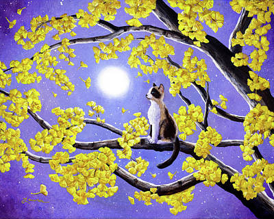 Snowshoe Siamese Kitten In Gingko Leaves Print by Laura Iverson