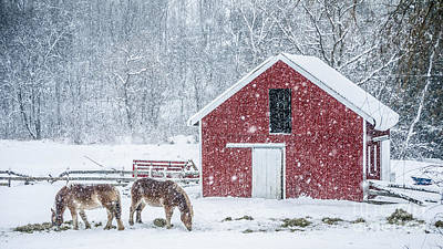 Red Barn. New England Photograph - Snowstorm Stowe Vermont by Edward Fielding