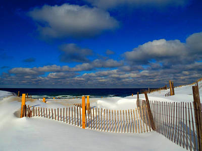 Snowy Beach  Print by Dianne Cowen