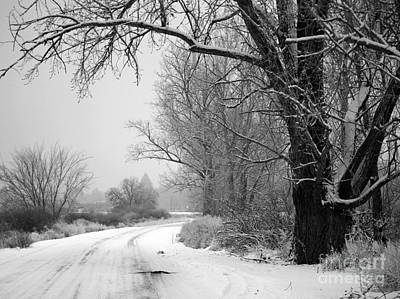 Snowy Branch Over Country Road - Black And White Print by Carol Groenen