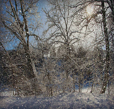 Snowy Day In The Park Print by Kathy Krause
